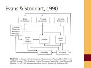 Model of the determinants of heath, from Evans and Stoddart, 1990
