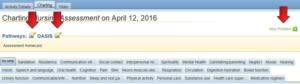 Charting Nursing Assessment screenshot