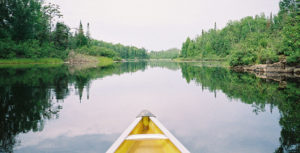 Bow of a wooden boat on a wooded lake