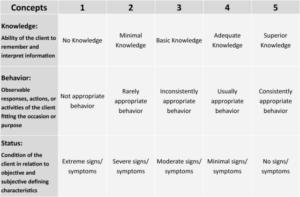 Nightingale Notes Knowledge Behavior Status (KBS) Table screenshot