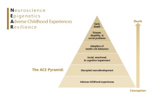 Grays Harbor ACE Pyramid ranging from Conception at the bottom to Death at the top for NEAR - Neuroscience, Epigenetics, Adverse Childhood Experiences and Resilience